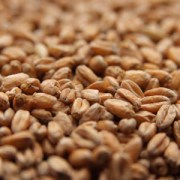 German Oak-Smoked Wheat Malt (3°) per lb.